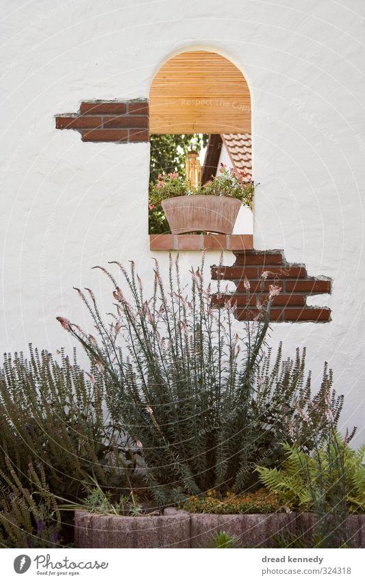 Fenster Kleinstadt Altstadt Haus Einfamilienhaus Bauwerk Mauer Wand Fassade Garten Stein natürlich Dekoration & Verzierung Pflanze Luke Privatsphäre Farbfoto