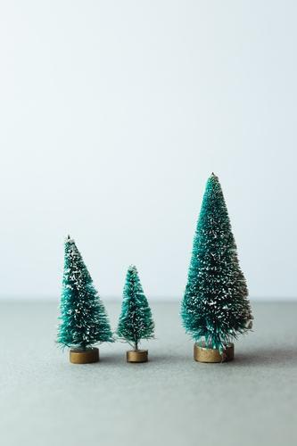 Kleine künstliche Weihnachtsbäume auf Holzständer Baum Weihnachten grün Feiertag Dekoration & Verzierung Zusammensetzung fluffig Winter Reihe Dezember festlich