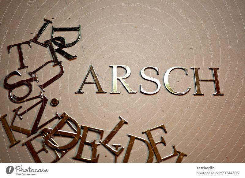 ARSCH Lateinisches Alphabet antiqua Buchstaben einzelbuchstabe Klassizismus Text Schriftzeichen Schriftstück Schriftsetzer Typographie Großbuchstabe Wort