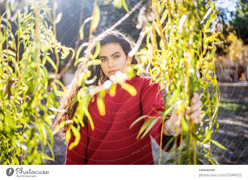 Frau Mensch Natur Jugendliche Junge Frau Pflanze schön grün rot Baum Erholung Einsamkeit Blatt ruhig Wald Lifestyle