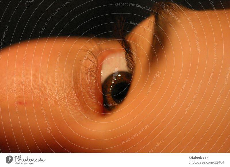 hi darling Frau Gesicht Auge feminin Wimpern Augenbraue