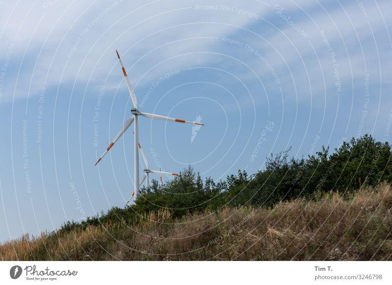 Wind Technik & Technologie Energiewirtschaft Erneuerbare Energie Windkraftanlage Energiekrise planen Farbfoto Außenaufnahme Menschenleer Tag Blick nach oben