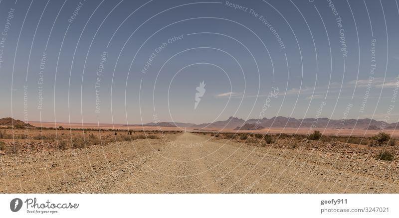 Auf dem Weg ins neue Jahr Ferien & Urlaub & Reisen Ausflug Abenteuer Ferne Freiheit Safari Expedition Berge u. Gebirge Umwelt Natur Landschaft Erde Sand Himmel