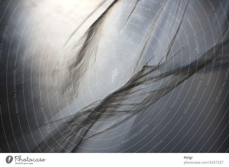 wehende dünne Kunsstofffolie im Gegenlicht Folie Falte Kunststoff fliegen authentisch außergewöhnlich einfach einzigartig grau weiß Bewegung bizarr Schutz