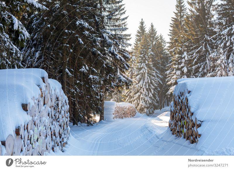 Winterwald Ausflug Schnee Winterurlaub Weihnachten & Advent Silvester u. Neujahr Wintersport Landwirtschaft Forstwirtschaft Güterverkehr & Logistik Natur