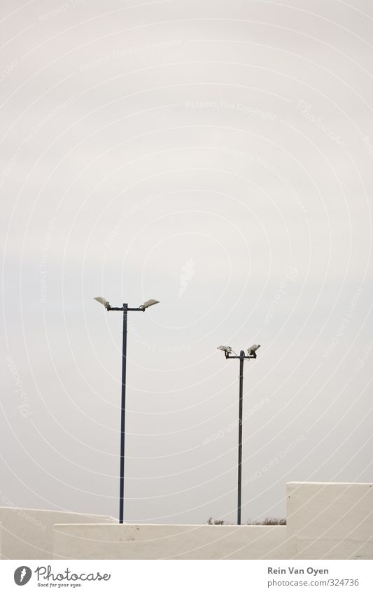 Saubere Straßenbeleuchtung Kleinstadt Stadt Horizont Lanzarote Laterne Peitschenlaterne Skyline Himmel grau Sauberkeit minimalistisch abstrakt weiß Beleuchtung