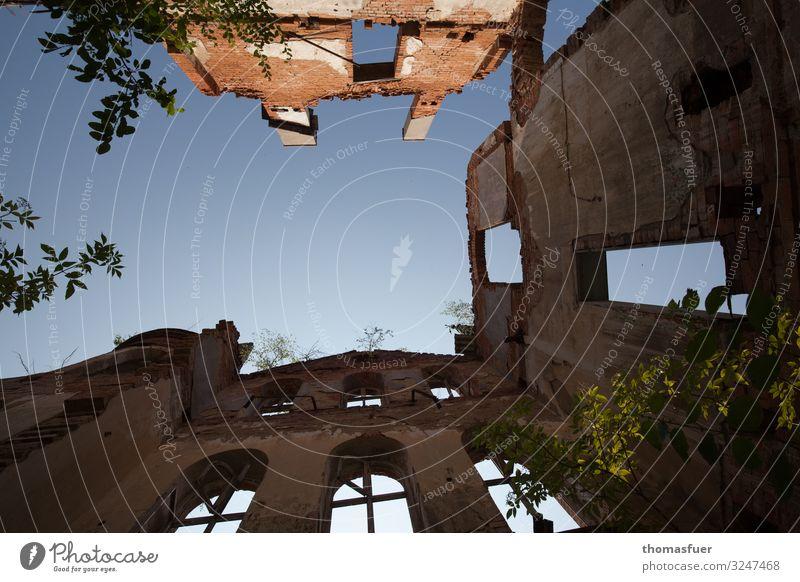 Ruine mit Himmel, Froschperspektive Tourismus Sightseeing Sommer Wolkenloser Himmel Schönes Wetter Baum Sträucher Park Altstadt Haus Kirche Gebäude Mauer Wand