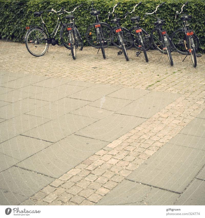 /\\\\\\ Verkehrsmittel Personenverkehr Fahrradfahren Straße Parkplatz Hecke Straßenbelag Reihe Ordnung nebeneinander Strukturen & Formen vermieten