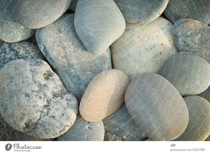 Steine Natur alt Strand Umwelt Stein Nordsee Dänemark