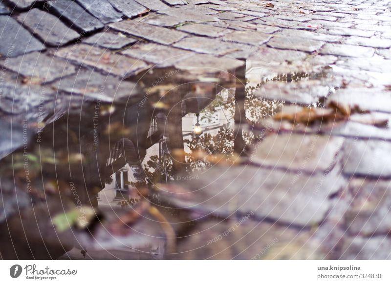 pfütze schlechtes Wetter Regen Wien Stadtzentrum Altstadt Hundertwasser Verkehr Verkehrswege Straßenverkehr Wege & Pfade kaputt nass Kopfsteinpflaster Farbfoto