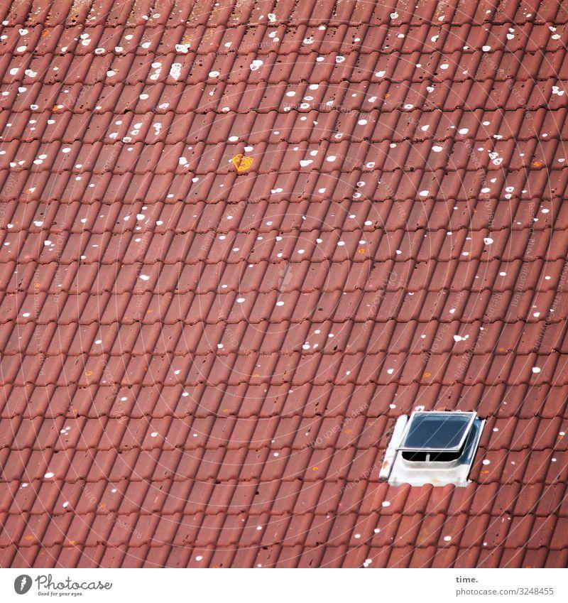 Luftloch Dach Dachfenster Dachluke Luke flecken dachziegel dachpfannen sonnig luftig frischluft lüften zink ton glas rot grau allein farbfleck