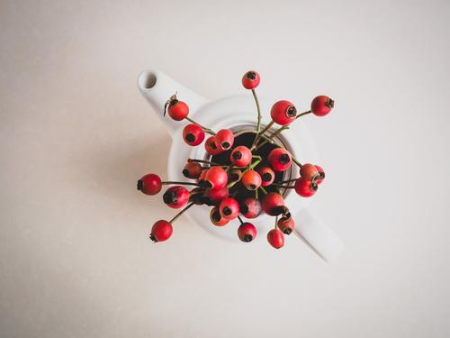Frische Hagebutten in einer weißen Teekanne Frühstück Gesundheit Alternativmedizin Gesunde Ernährung Krankheit Leben harmonisch Wohlgefühl genießen Duft frisch