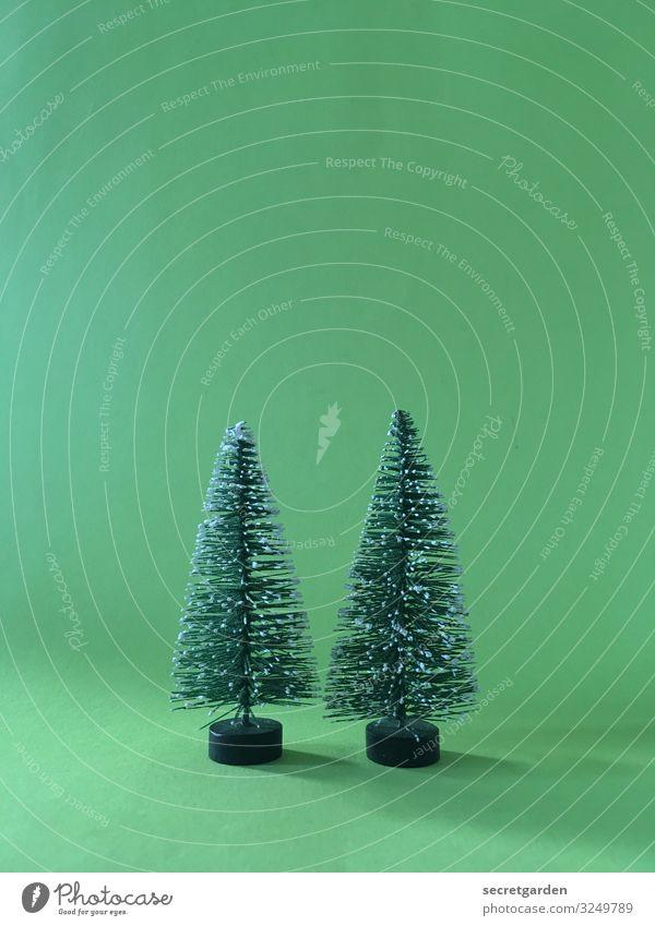 Zweiter Advent. Modellbau Winter Weihnachten & Advent Umwelt Baum Grünpflanze Tanne Zeichen niedlich Spitze stachelig grün Zufriedenheit Kitsch minimalistisch