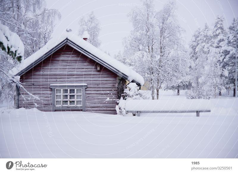 Verschneite Hütte Winter Schnee Winterurlaub Haus Natur Eis Frost Schweden Lappland Dorf Menschenleer Holz Glas frieren genießen Häusliches Leben