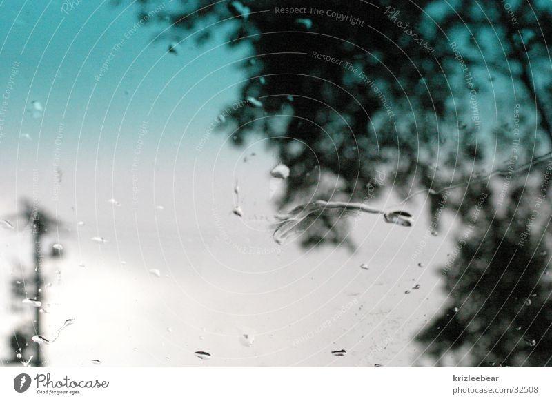 verschwommene realtität im sommerregen Windschutzscheibe Unschärfe unklar Baum Umwelt Umgebung Fototechnik Regen Wassertropfen Wetter Gewitter abstrakt