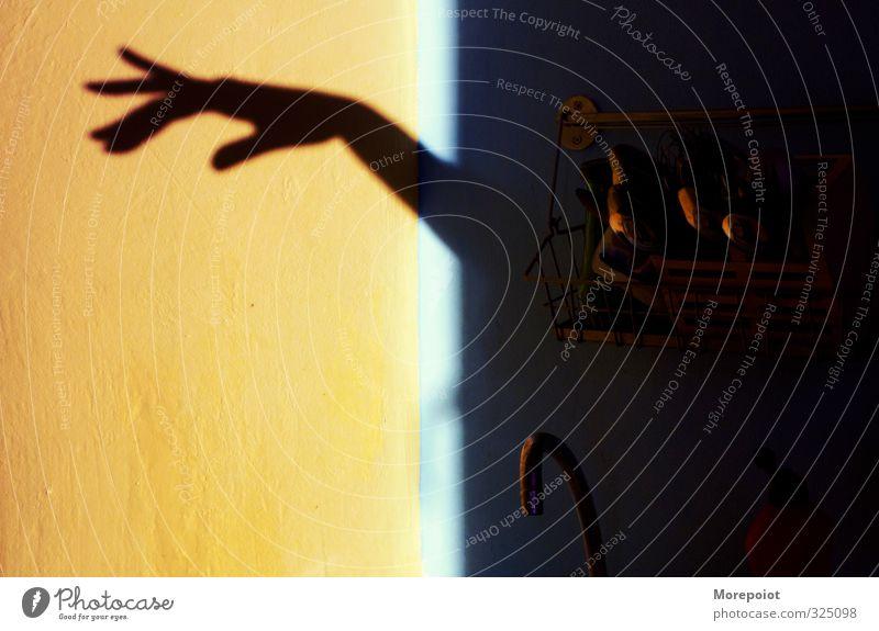* Wohnung Küche Frau Erwachsene Arme Hand 1 Mensch Stimmung Schattendasein Schwache Tiefenschärfe Schattenspiel Kontrast Farbfoto Menschenleer Tag Licht