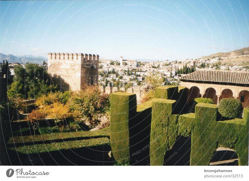 Alhambra Natur Sonne grün Sommer Europa Granada Spanien Süden Maure Alhambra