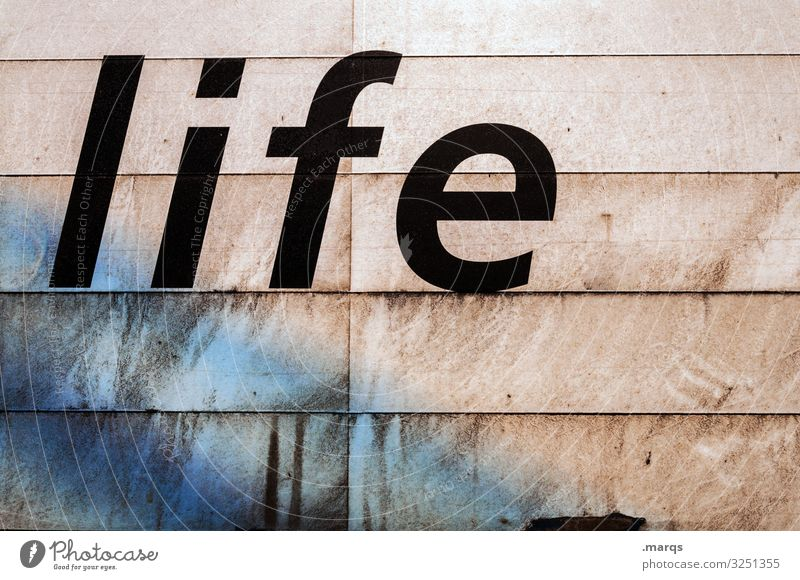life Schriftzeichen Leben Lebenslauf Typographie Text Wort Buchstaben Lifestyle Realität Verschmutzung Kommunikation lebensweg Lebensfreude Zukunft