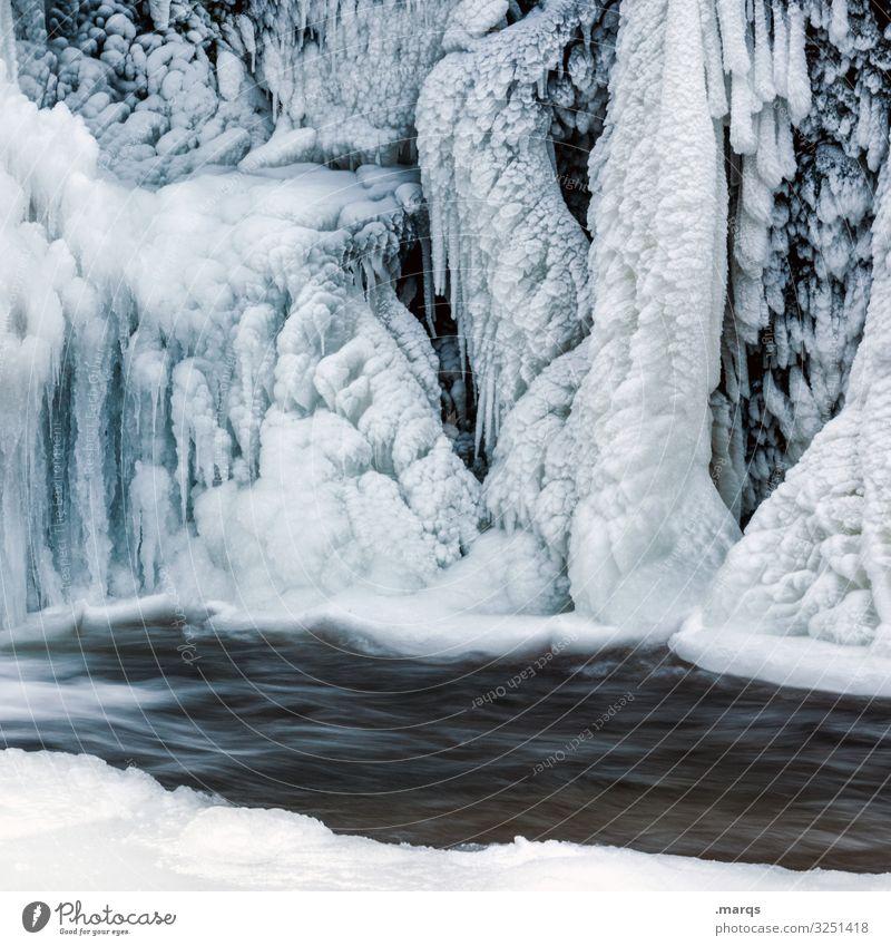 Kälter Natur Urelemente Wasser Winter Eis Frost Fluss Wasserfall Triberg Eiszapfen Ewiges Eis kalt komplex Umwelt Farbfoto Außenaufnahme Strukturen & Formen