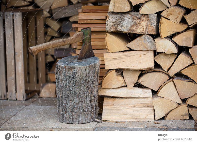 Brennholzvorrat Herbst Winter Axt Holz authentisch nachhaltig positiv trocken braun gelb grau Zufriedenheit anstrengen Erfolg Gesellschaft (Soziologie) Klima