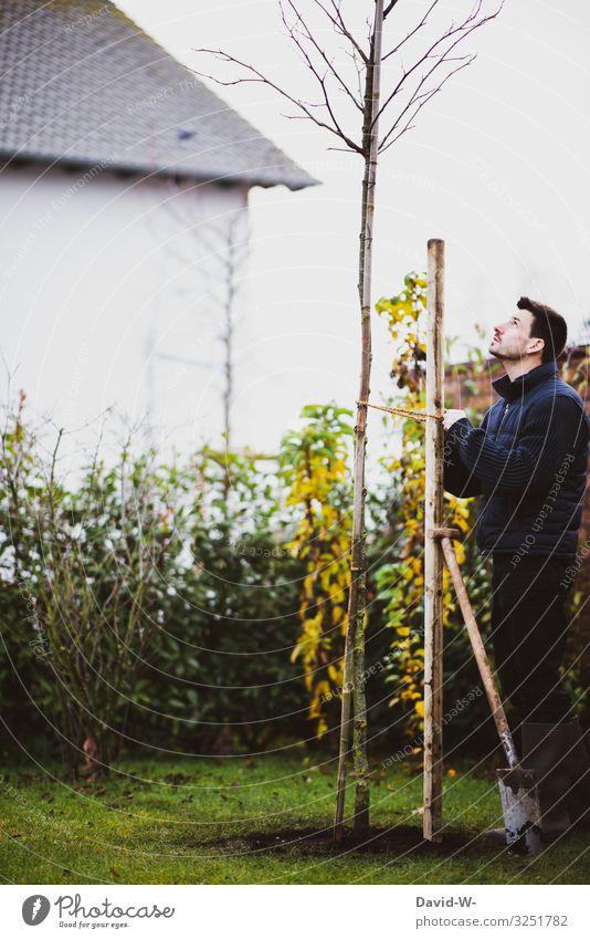 Mann pflanzt Baum mit Sparten im Garten pflanzen Umwelt nachhaltig verantwortung grün umweltfreundlich Natur Pflanze Umweltschutz Wachstum Klima Gartenarbeit