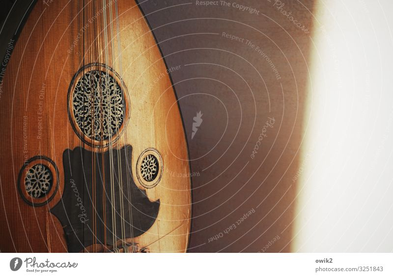 Taqsim Musik Laute Arabische Laute Oud Naher und Mittlerer Osten Wand Holz Metall Kunststoff exotisch glänzend Gelassenheit geduldig ruhig Idylle anlehnen Klang