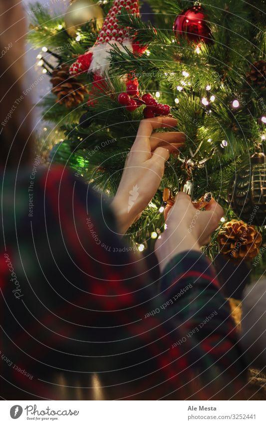Goldenes Rentierornament Lifestyle Freude Winter Wohnung Haus Innenarchitektur Dekoration & Verzierung Lampe Feste & Feiern Weihnachten & Advent Mensch Frau