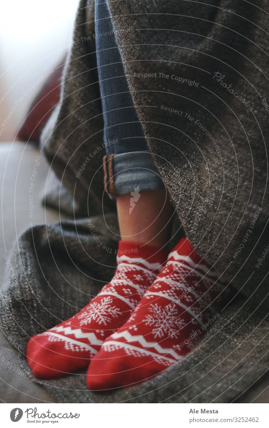 Kuschelige Weihnachtssocken Lifestyle Freude Glück Erholung Winter Haus Dekoration & Verzierung Weihnachten & Advent Frau Erwachsene Fuß Herbst Jeanshose