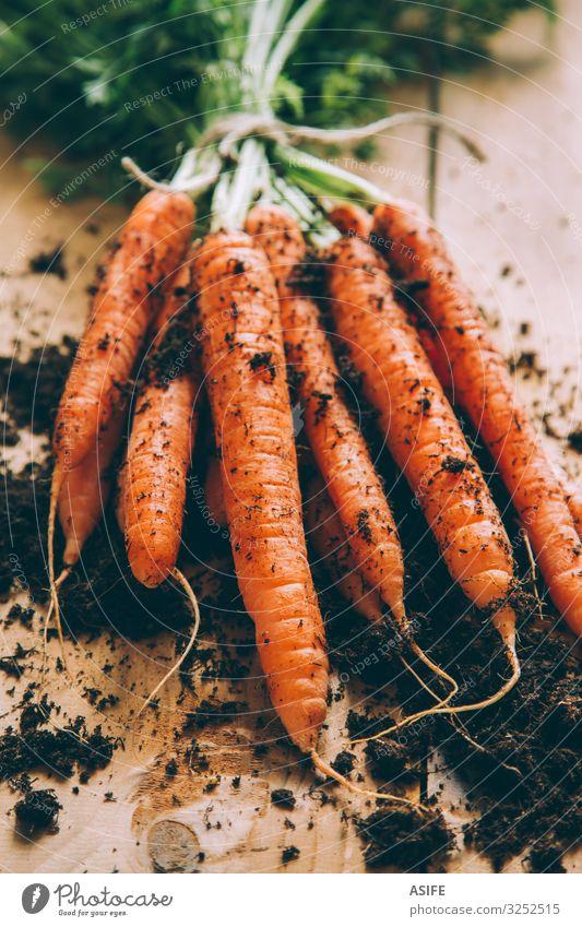 Bündel Karotten Gemüse Vegetarische Ernährung Tisch Erde frisch grün Haufen Möhre Anhäufung Feldfrüchte Anschnitt Lebensmittel Gesundheit orange roh Wurzel