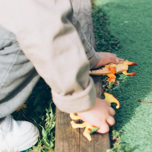 Schlafende Dinosaurier Freude Spielen Kind Schule Mensch Junge Kindheit Hand Gras Park Spielplatz Spielzeug Puppe Wachstum 5 Jahre künstlich Bildung Boden