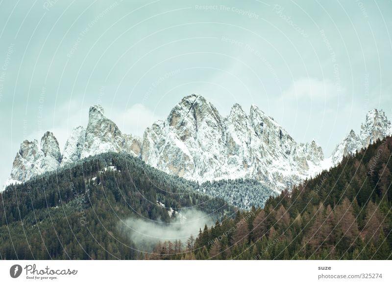 Der Berggeist Umwelt Natur Landschaft Himmel Wolken Klima Wetter Wiese Wald Alpen Berge u. Gebirge Gipfel Schneebedeckte Gipfel außergewöhnlich fantastisch groß
