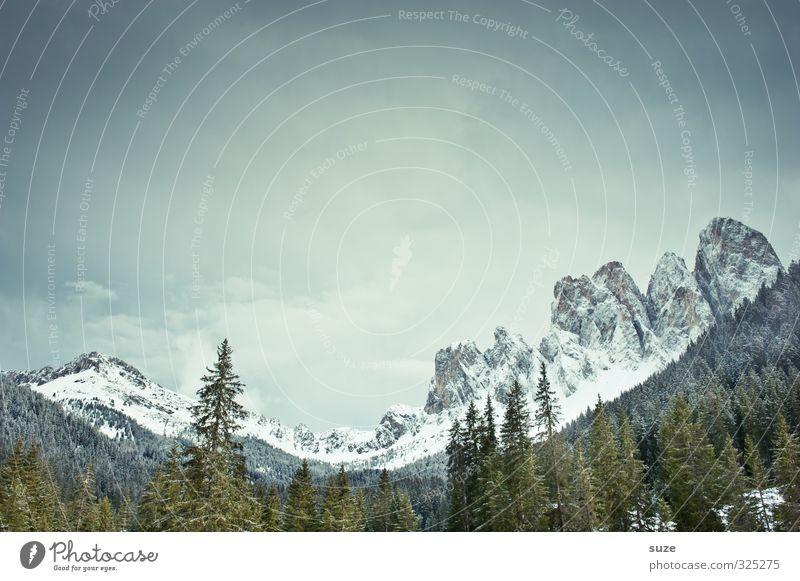 Wenn der Berg nicht zum Propheten kommt, ... Himmel Natur Ferien & Urlaub & Reisen blau grün Landschaft Wolken kalt Wald Berge u. Gebirge Umwelt Schnee