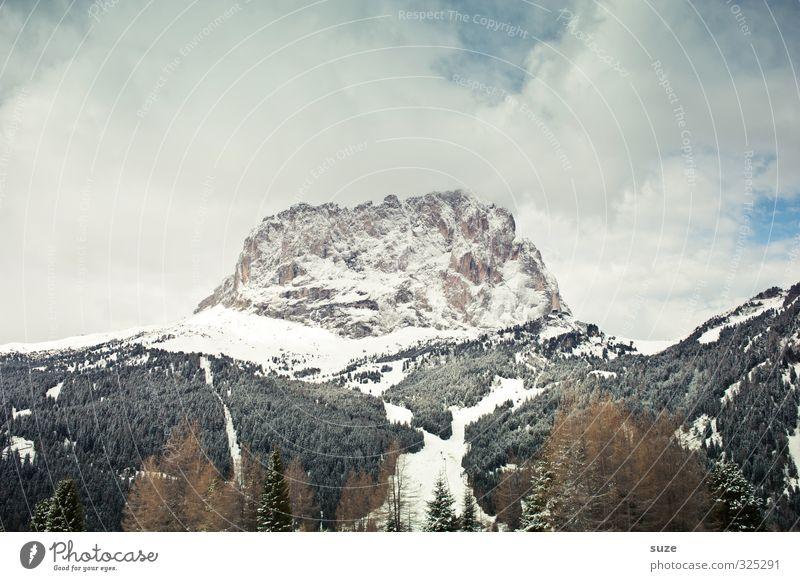 Frontal Himmel Natur Ferien & Urlaub & Reisen Landschaft Wald dunkel kalt Umwelt Berge u. Gebirge Schnee Reisefotografie außergewöhnlich Luft Freizeit & Hobby