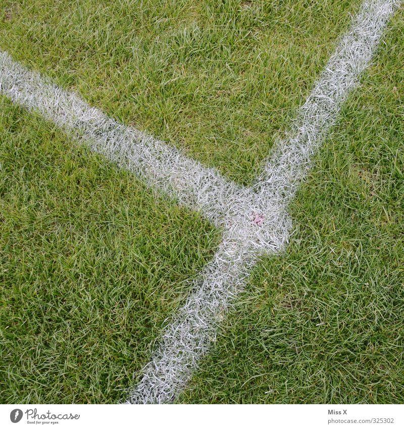 Treffpunkt Sport Ballsport Sportstätten Fußballplatz Gras Spielen grün Sportrasen Linie Eckstoß Mittellinie Schilder & Markierungen Markierungslinie Farbfoto