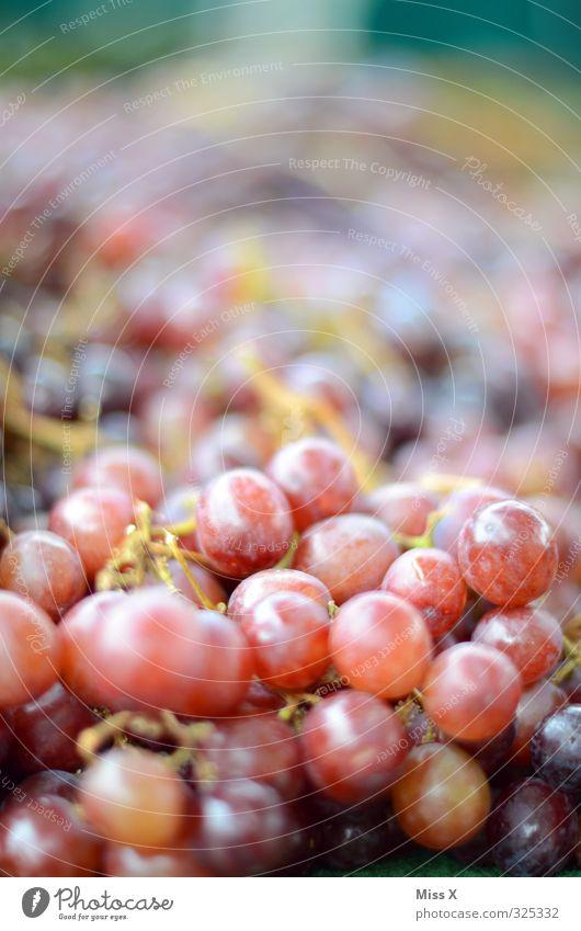 Weintrauben Lebensmittel Frucht Ernährung Bioprodukte Vegetarische Ernährung frisch Gesundheit lecker süß rot rote Trauben Wochenmarkt Ernte Obstladen