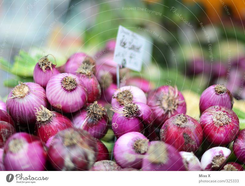 Zwiebeln Gesundheit Lebensmittel frisch Ernährung viele Scharfer Geschmack Gemüse Ernte lecker Bioprodukte verkaufen Vegetarische Ernährung Haufen Preisschild Zwiebel Gemüsehändler