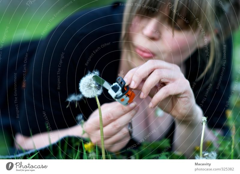 Gartenarbeit Mensch Frau Natur Jugendliche Pflanze 18-30 Jahre Erwachsene Umwelt Wiese Gras feminin Kopf Freizeit & Hobby Frauenbrust liegen