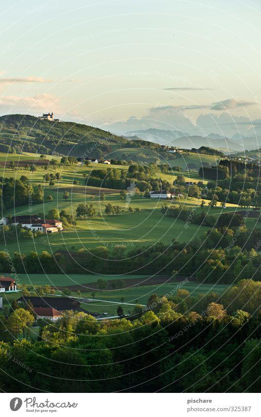 Heimat der Mostbarone Natur schön Landschaft Wald Wiese Schönes Wetter Hügel Österreich Mosaik
