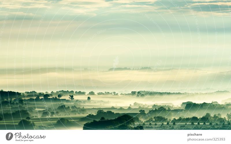 Das Mostviertel Natur grün Landschaft dunkel Umwelt Frühling Wetter Nebel Klima Österreich