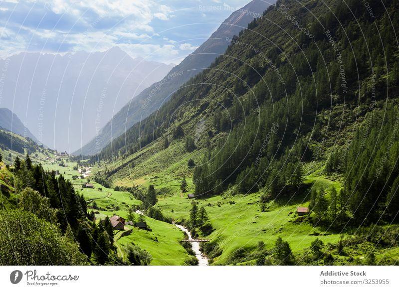 Malerische idyllische Berglandschaft in der Schweiz malerisch Berge u. Gebirge Wiese Gipfel Landschaft Alpen grün Natur Tourismus ländlich Sommer Gras