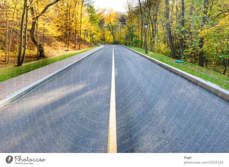 Straßen- und Herbstlandschaft Lifestyle schön Ferien & Urlaub & Reisen Ausflug Abenteuer Sommerurlaub Umwelt Natur Landschaft Sonnenaufgang Sonnenuntergang