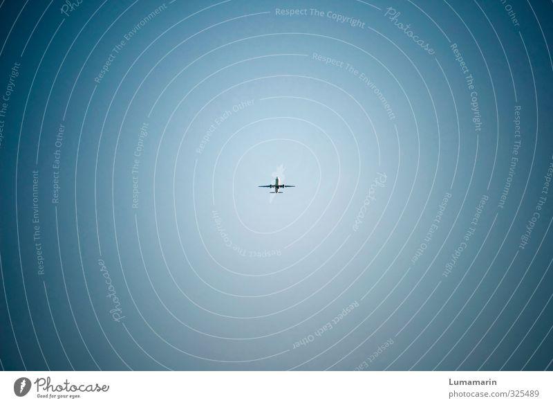 Schwebeteilchen Ferien & Urlaub & Reisen blau Sommer Ferne klein Business fliegen Stimmung Tourismus Verkehr Luftverkehr hoch Geschwindigkeit Schönes Wetter Flugzeug Flugangst