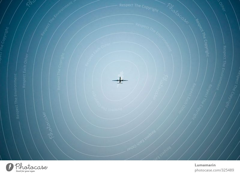 Schwebeteilchen Ferien & Urlaub & Reisen Tourismus Ferne Sommer Sommerurlaub Wolkenloser Himmel Schönes Wetter Verkehr Verkehrsmittel Luftverkehr Flugzeug