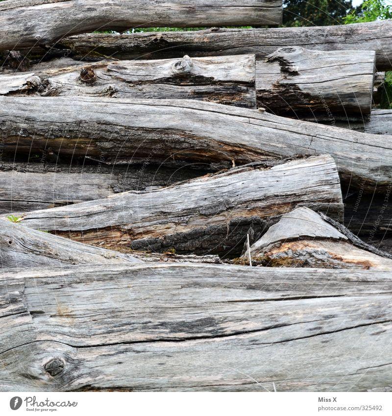 Baumaterial | noch mehr Holz alt Baumstamm Brennholz Sägewerk