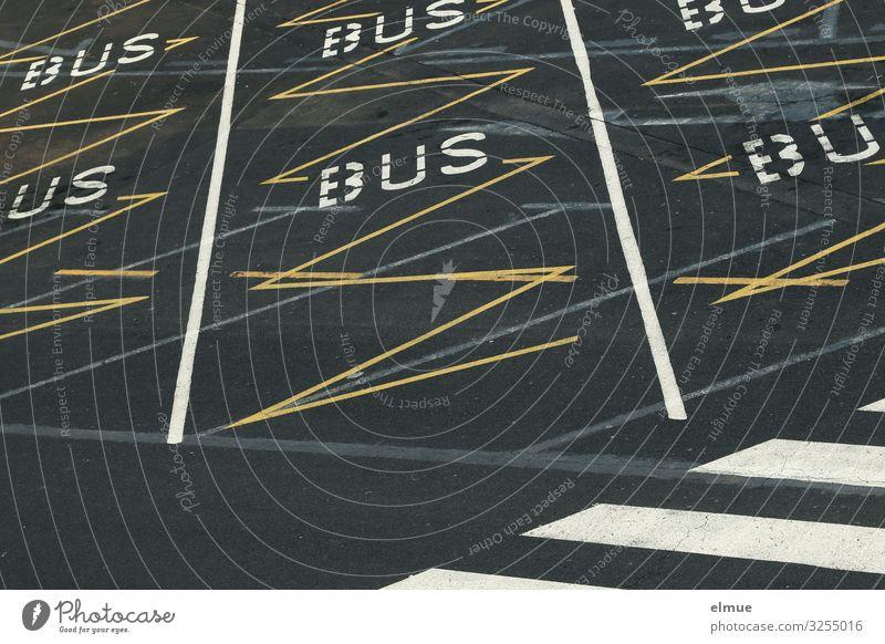 Parkplatz Stadt Verkehr Verkehrswege Personenverkehr Straßenverkehr Autofahren Busfahren Fußgänger Wegkreuzung Markierungslinie Busparkplatz Fußgängerübergang