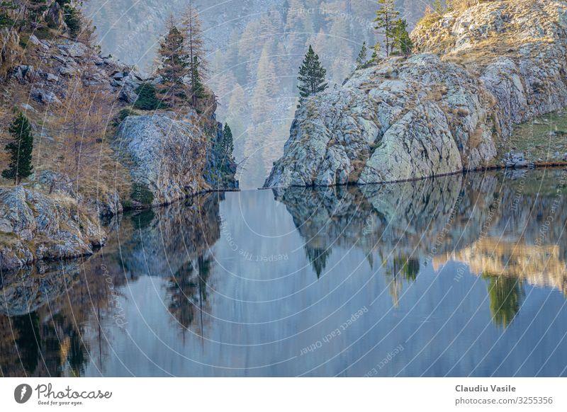 Wassertropfen am Trecolpas Lake Natur Landschaft Sonnenlicht Herbst Baum Blatt Alpen Berge u. Gebirge Seeufer wandern Oktober Felsen Französisch Ausflug
