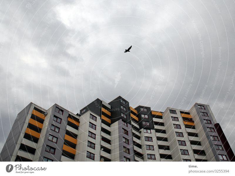 Beobachtungsflug Himmel Wolken Gewitterwolken Unwetter Wind Hannover Stadtzentrum Hochhaus Bauwerk Architektur Fassade Balkon Fenster Dach fliegen ästhetisch