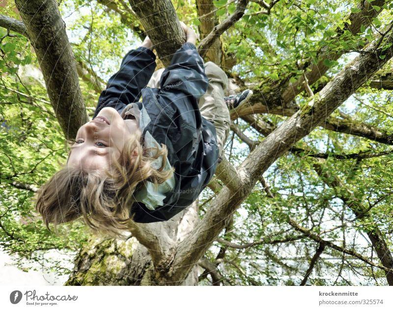 Frühlingshoch Mensch Kind grün Baum Freude Blatt Umwelt Gefühle Frühling Spielen Junge Haare & Frisuren lustig Glück maskulin Kindheit