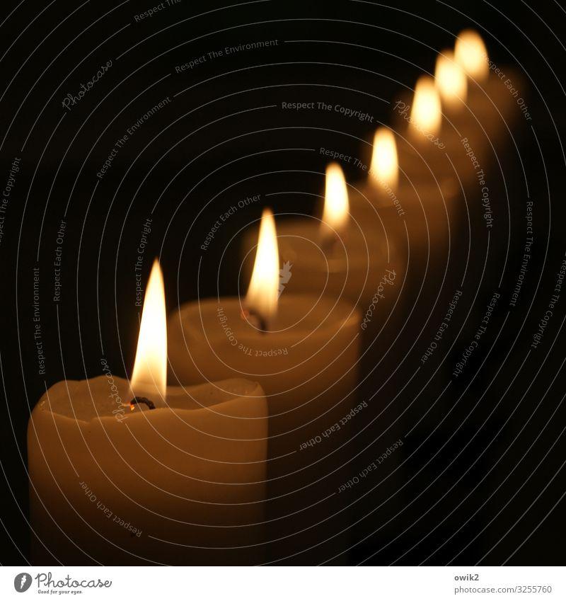 Stillgestanden! Kerze Kerzenschein Flamme leuchten viele Genauigkeit Ordnung gerade Linie dunkel Warmes Licht Kerzendocht Farbfoto Außenaufnahme Detailaufnahme