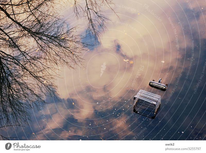 Absacker Umwelt Natur Landschaft Wasser Himmel Wolken Baum Zweige u. Äste Wasseroberfläche Teich See Einkaufswagen Holz Metall Schwimmen & Baden unten träumen